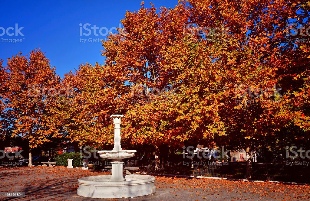 Autumn landscape in park with fountain, Greece stock photo