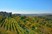 Autumn Landscape Near Smartno