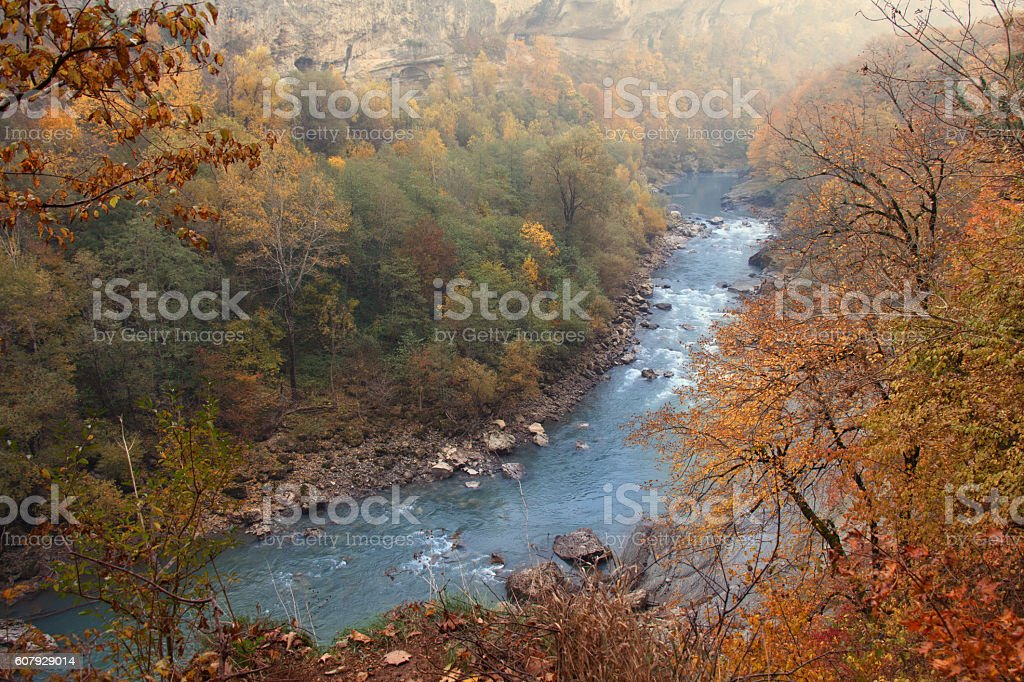 Autumn landscape of vast forest territory with rapid mountain river stock photo