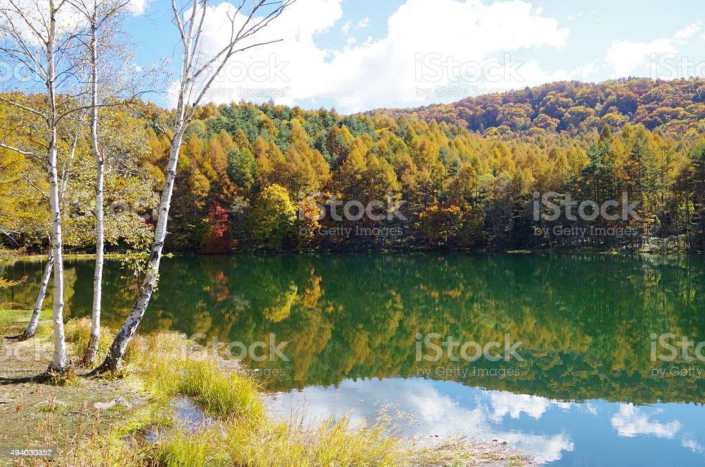 Paisaje de otoño foto de stock libre de derechos