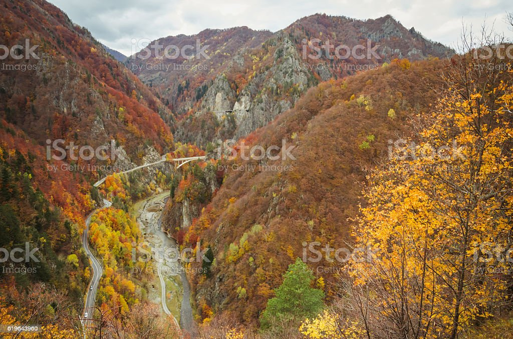 Autumn landscape. stock photo