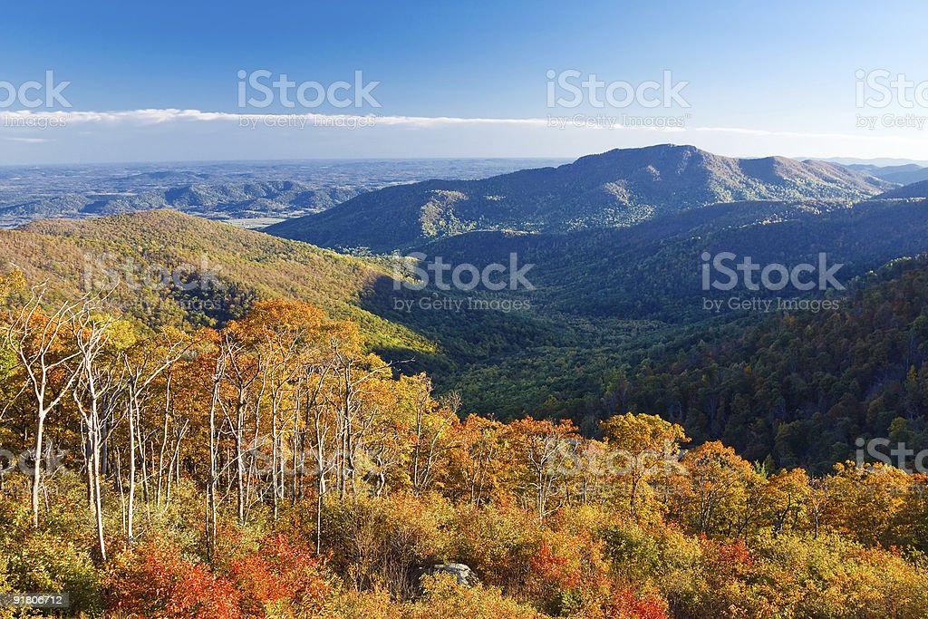 Autumn landscape royalty-free stock photo