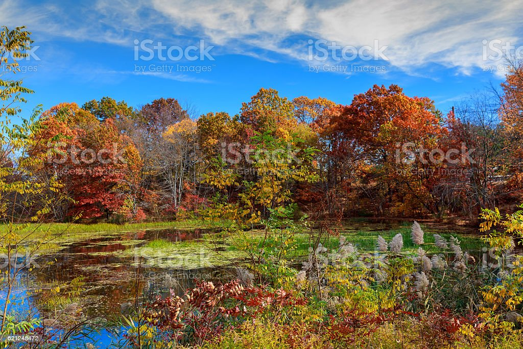 Autumn Landscape. The bright colors in the lake. stock photo