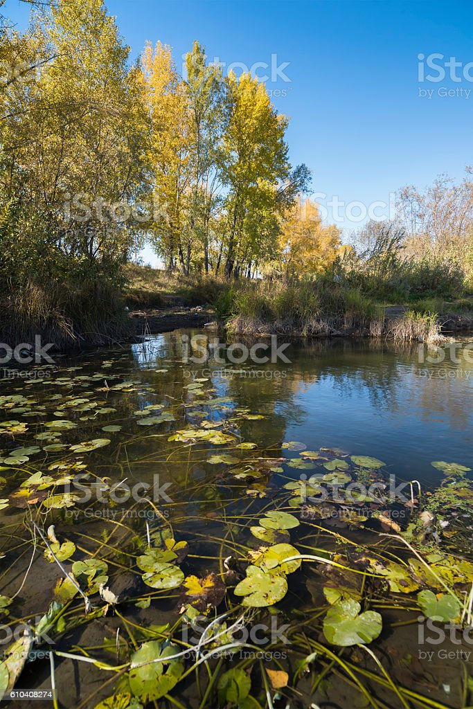 autumn landscape with a river view stock photo