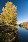 autumn landscape with a river view
