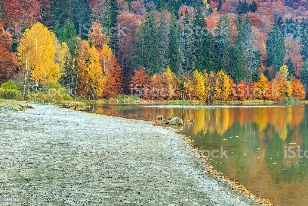 Autumn landscape with colorful forest,St Ana Lake,Transylvania,Romania stock photo