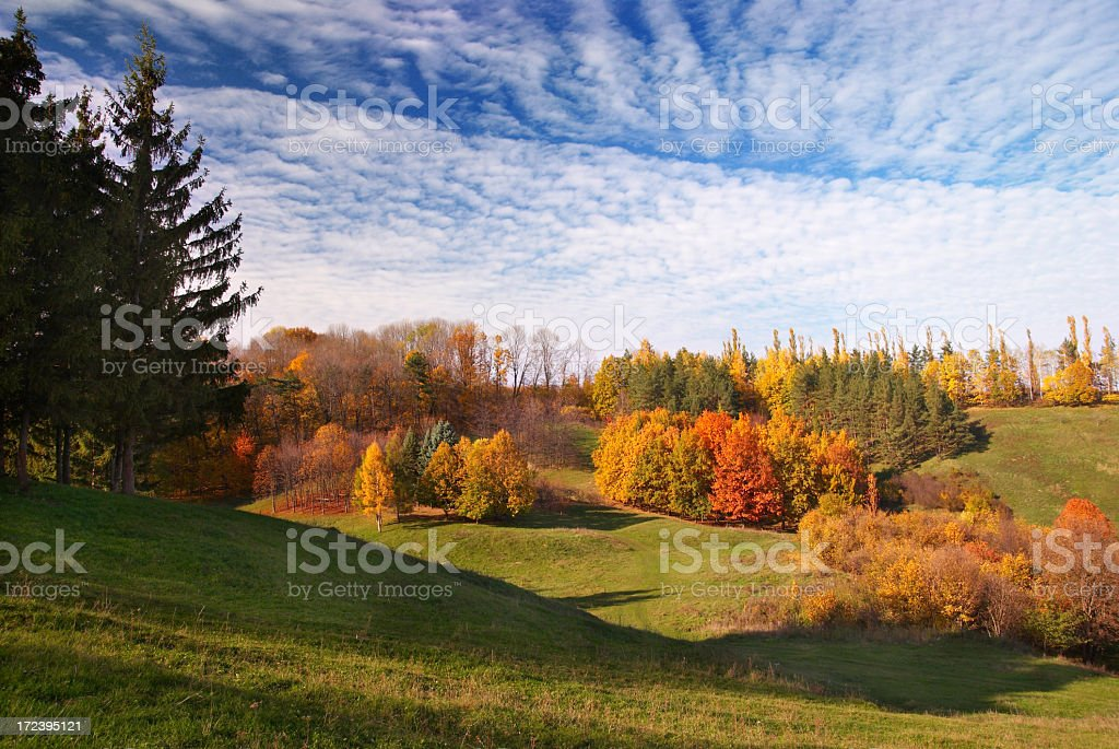Autumn landscape with colorful trees stock photo