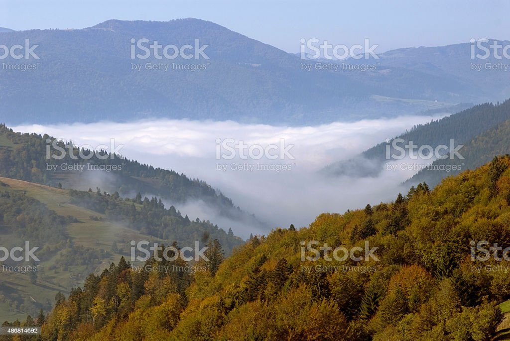 autumn landscape with fog stock photo