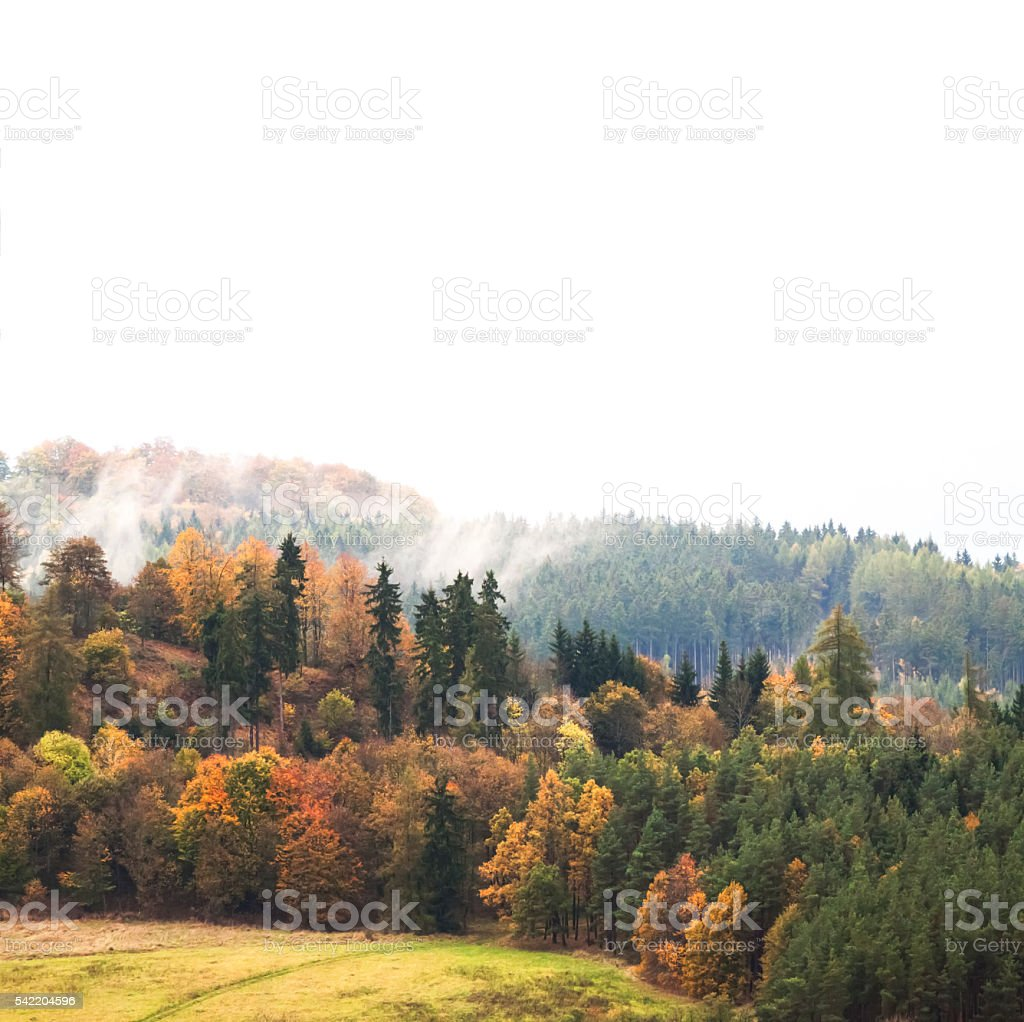 Autumn landscape with hills, field, forest, nature background, copy space stock photo