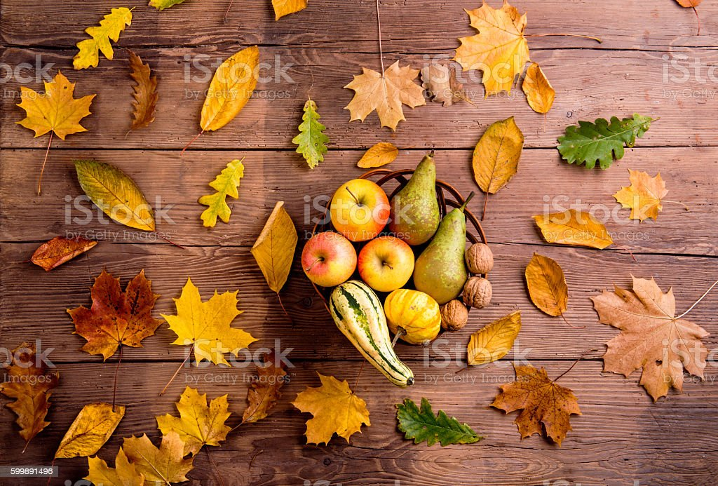 Autumn leaf and fruit composition. Studio shot, wooden backgroun stock photo