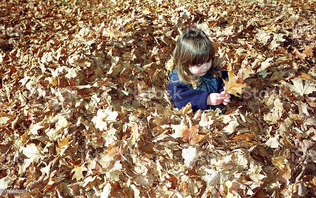 Autumn leaf fun royalty-free stock photo