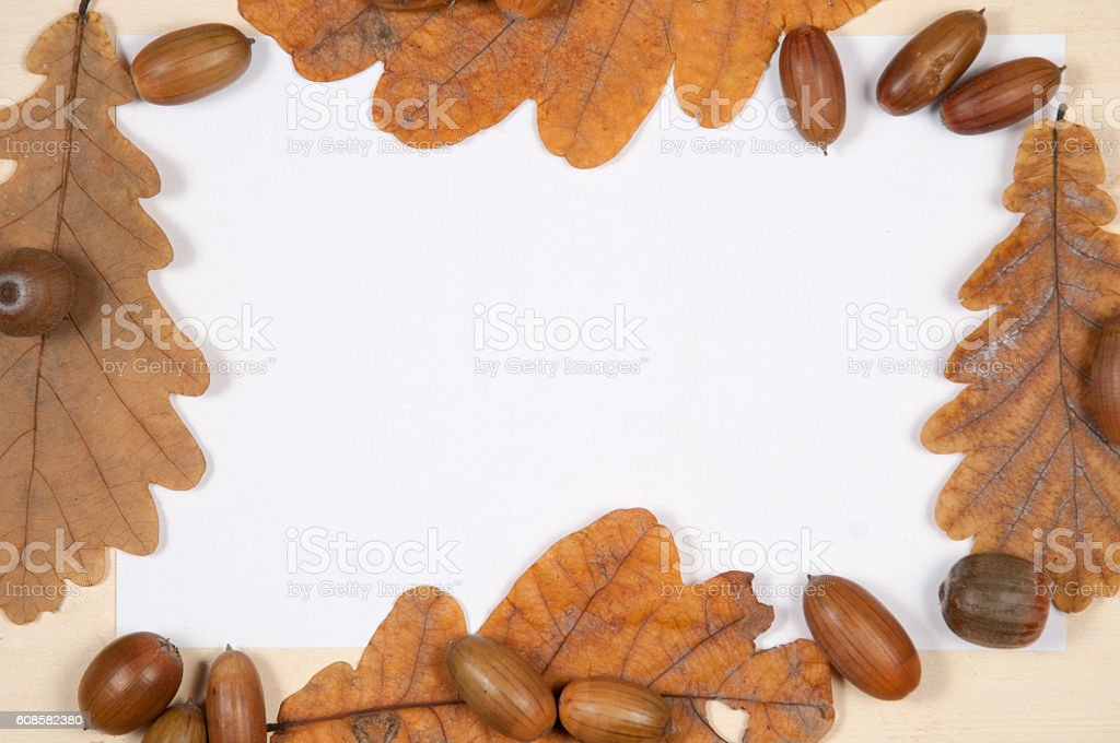 Autumn leaves and acorns frame border background. Top view. stock photo
