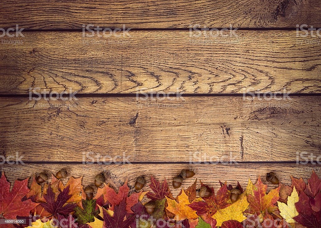 Autumn leaves and acorns on rustic wooden background stock photo