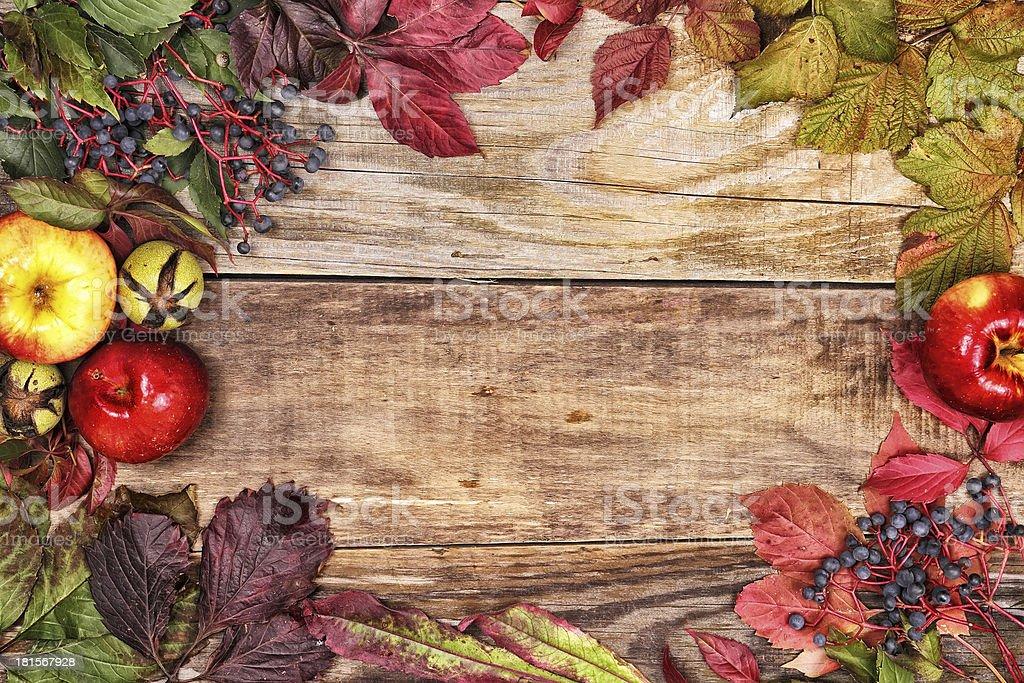 秋の葉とリンゴの古い木 ロイヤリティフリーストックフォト