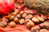 Autumn leaves and autumn chestnuts