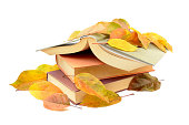 Autumn leaves and book
