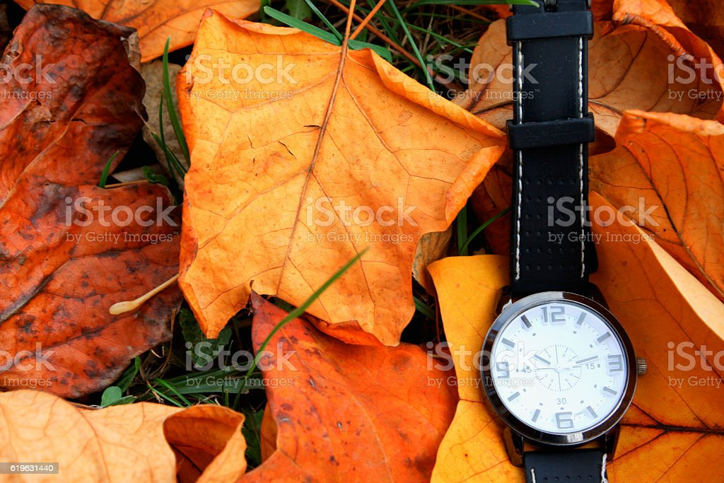 Autumn Leaves and Clock isolated stock photo