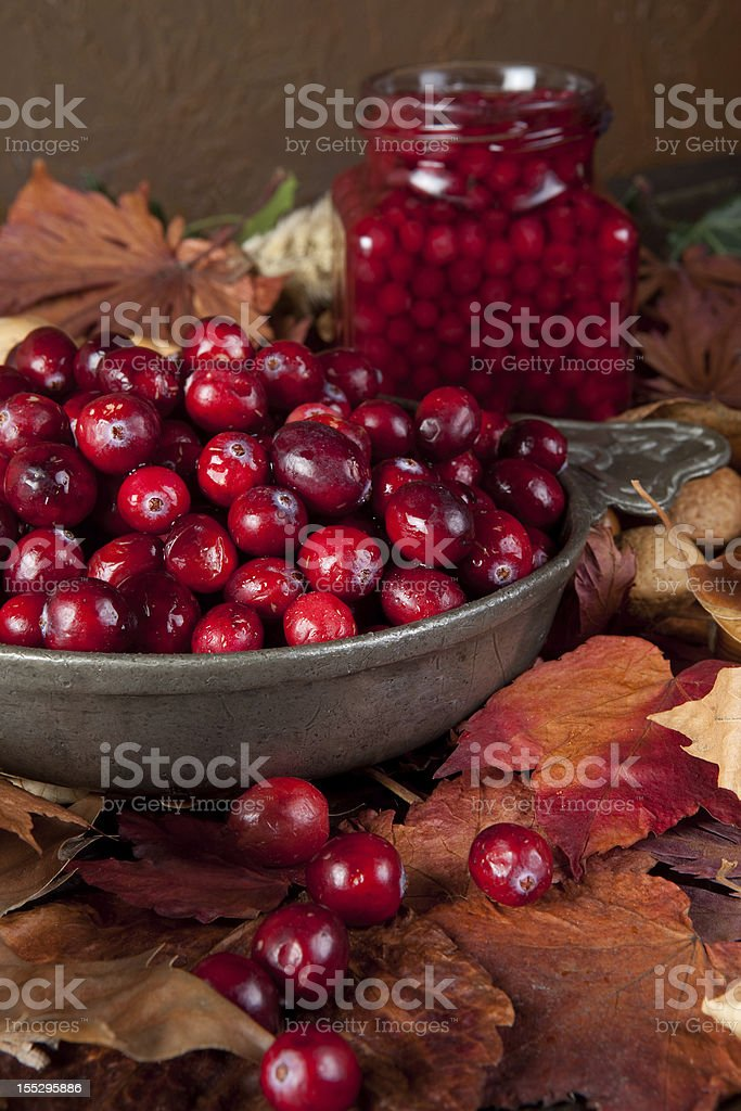 Autumn leaves and cranberries royalty-free stock photo
