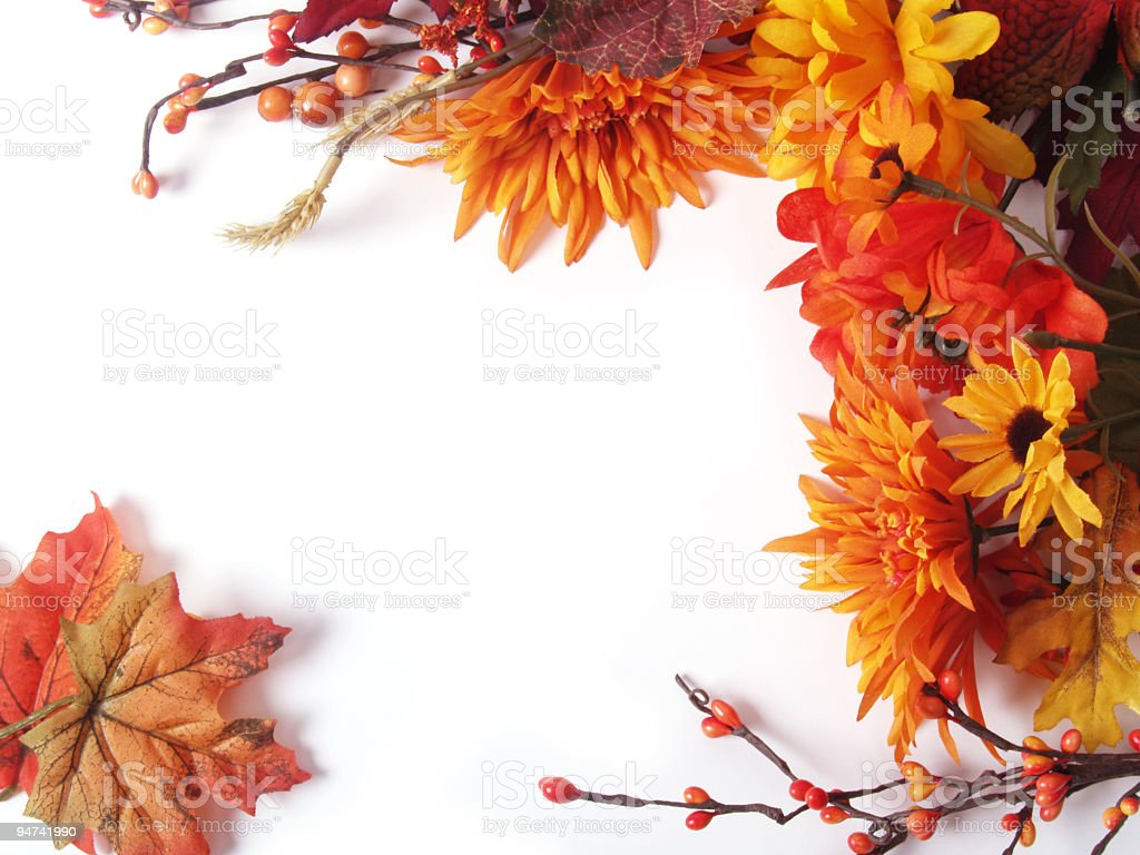 Autumn Leaves and Flowers Frame royalty-free stock photo