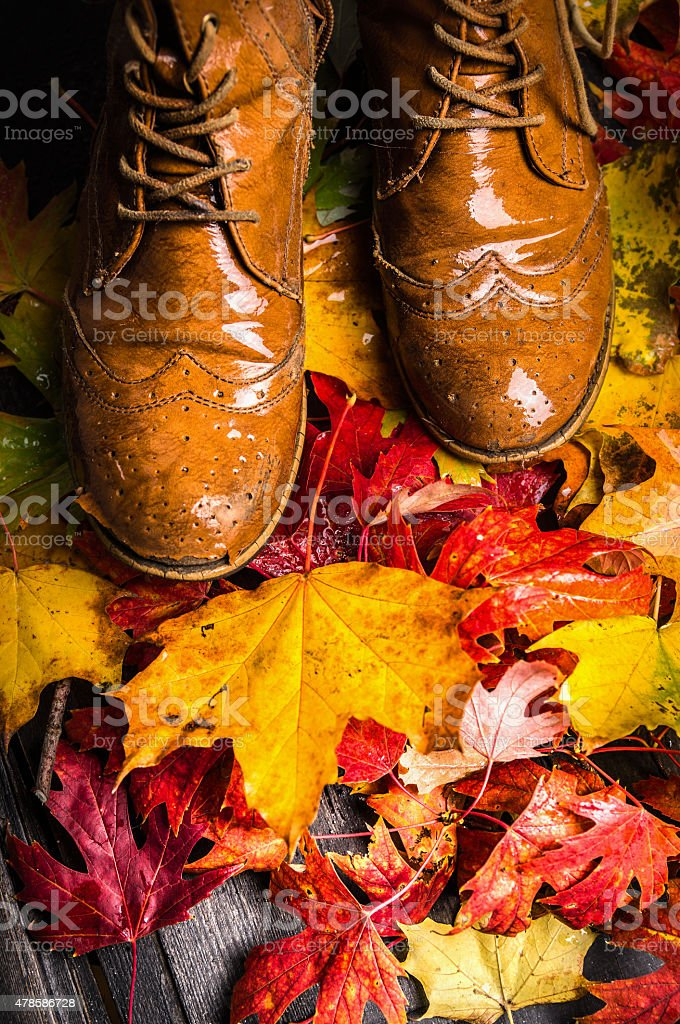 autumn leaves and old shoes on wooden terrace, fall background stock photo
