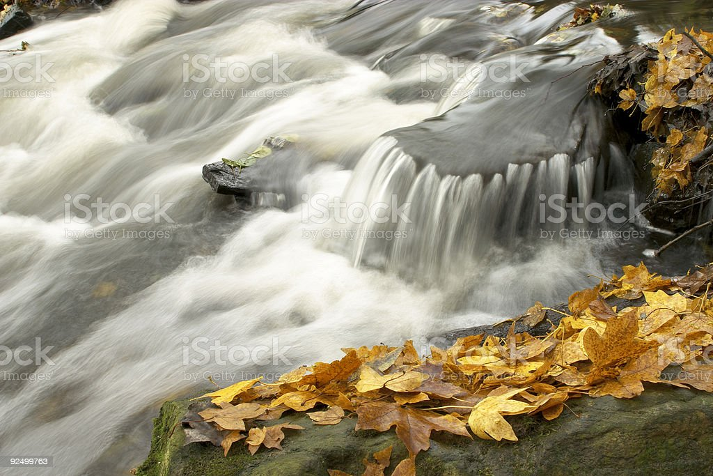 Autumn Leaves and Water Rapids royalty-free stock photo