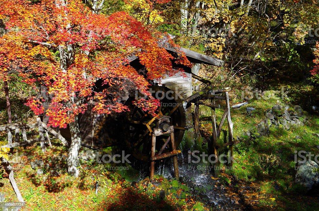 Hojas otoñales y Watermill foto de stock libre de derechos