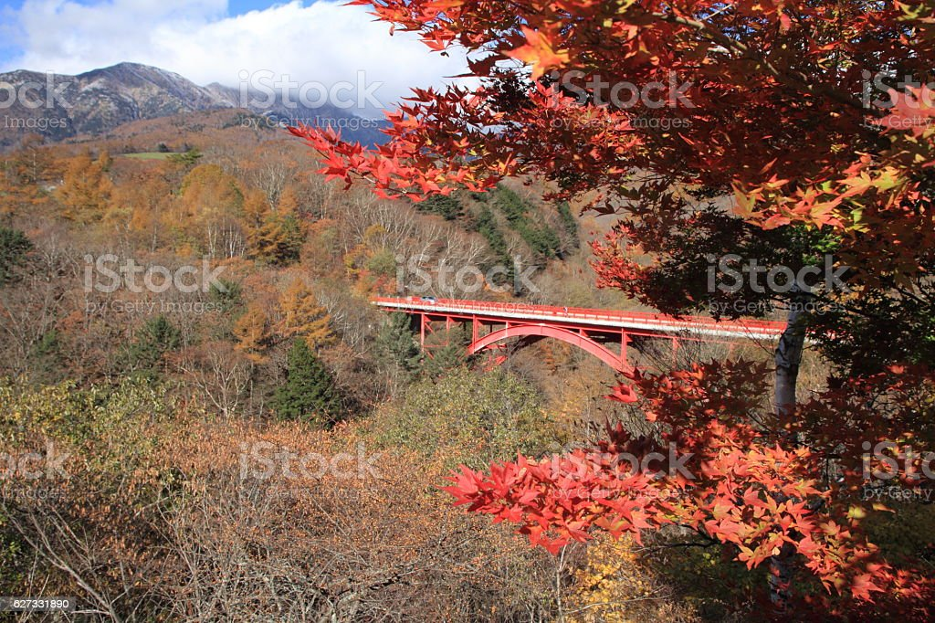 Autumn leaves at East river bridge in Kiyosato stock photo