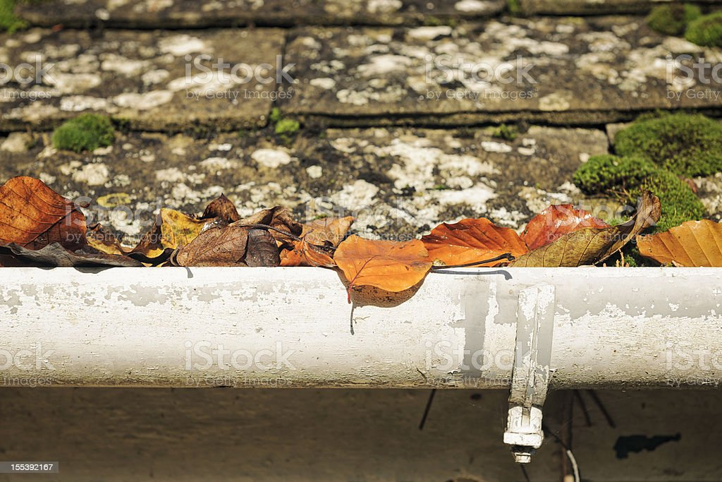 Autumn Leaves Blocking a Gutter royalty-free stock photo