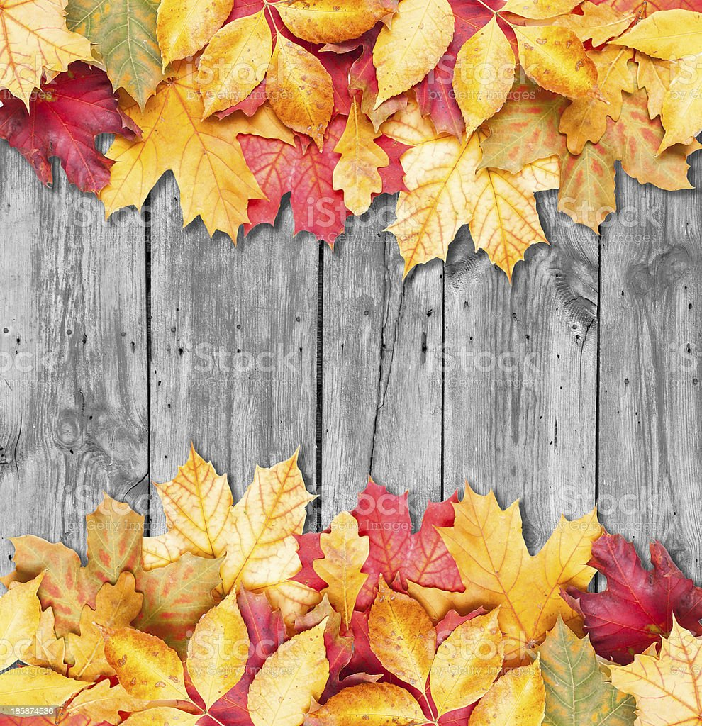 Autumn leaves border on wooden pallet background stock photo
