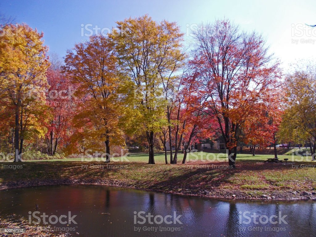 Autumn leaves Clifton park New York stock photo