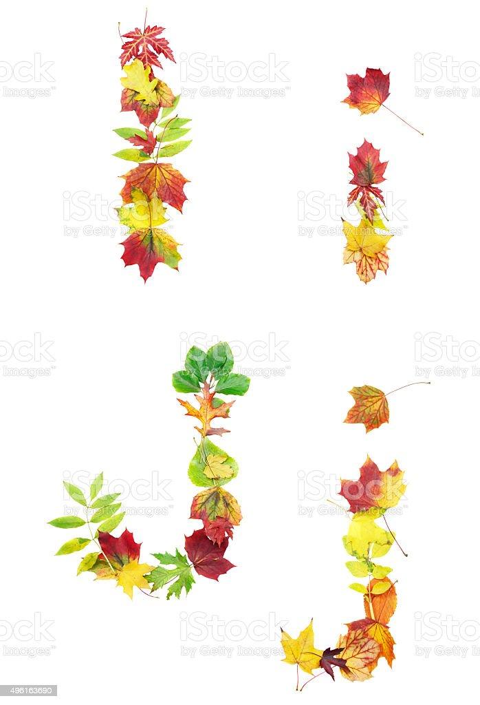 Autumn leaves font stock photo