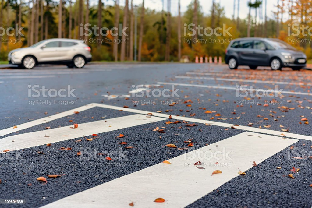 Autumn leaves lying in a parking lot stock photo