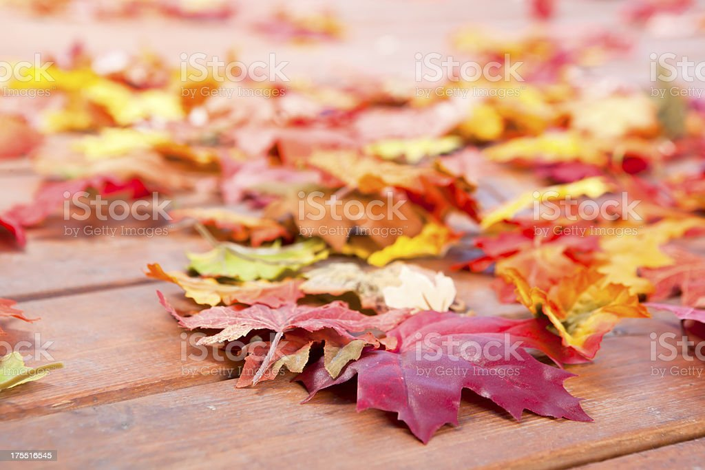 Autumn leaves on deck royalty-free stock photo