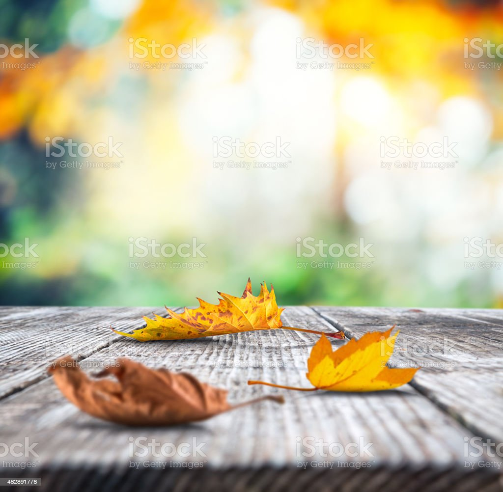 Autumn Leaves On Wooden Desk stock photo