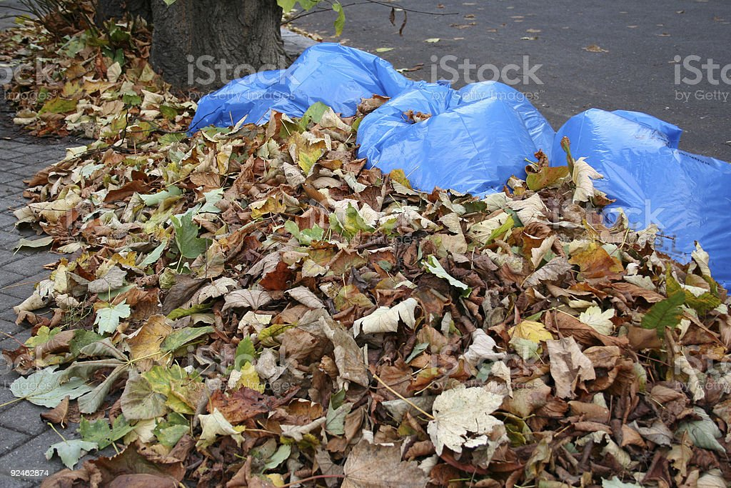 Autumn Leaves swept up by street cleaners stock photo