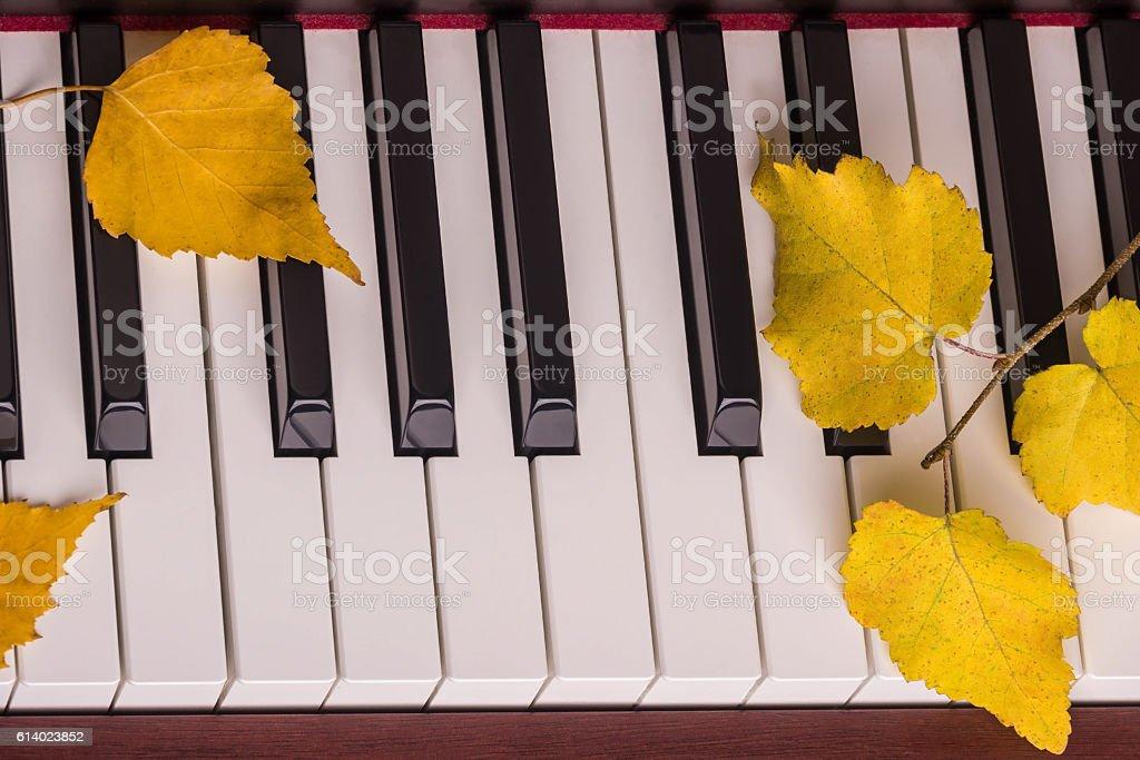 Autumn leaves the keys on piano stock photo