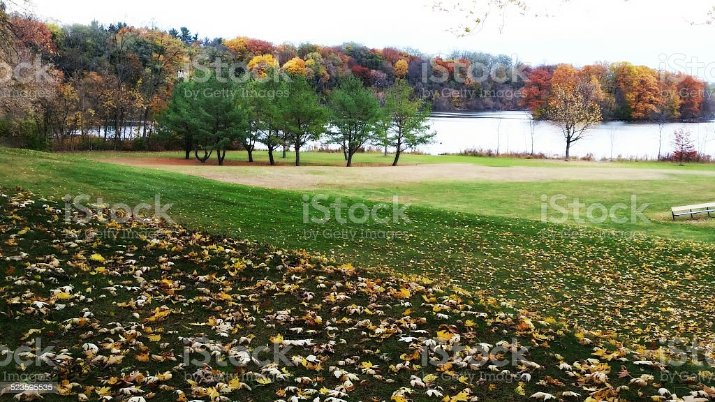 Autumn Leaves, Trees and Pond, Collins Park, Scotia, New York stock photo