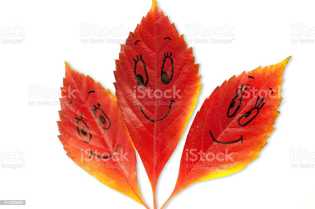 autumn leaves with a face stock photo
