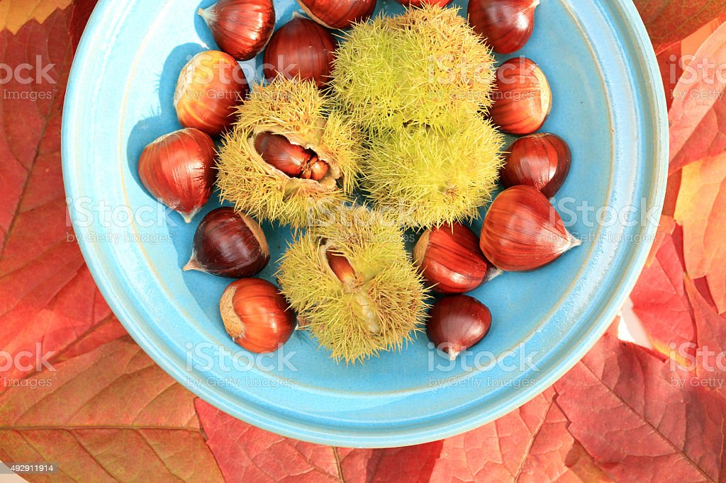 autumn leaves with chestnuts in a bowl stock photo