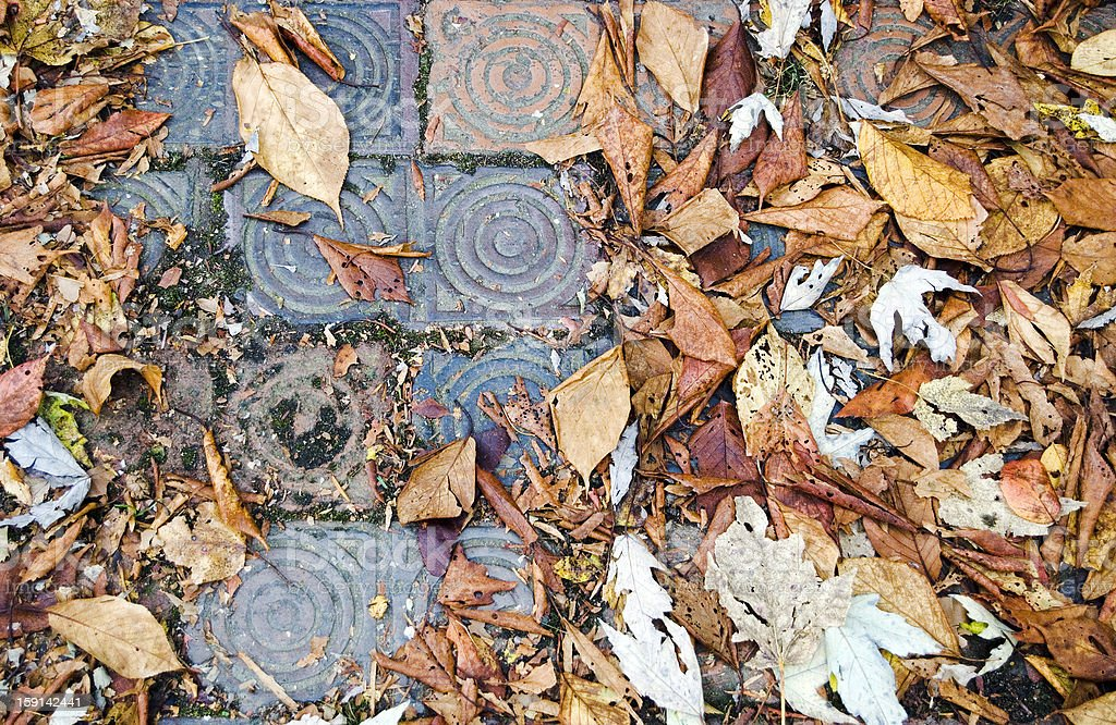 Autumn leaves with paving stones royalty-free stock photo