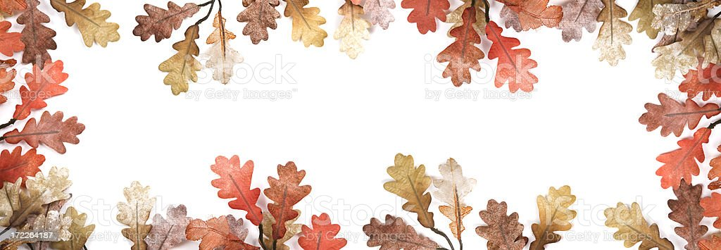 Autumn Leaves XL royalty-free stock photo