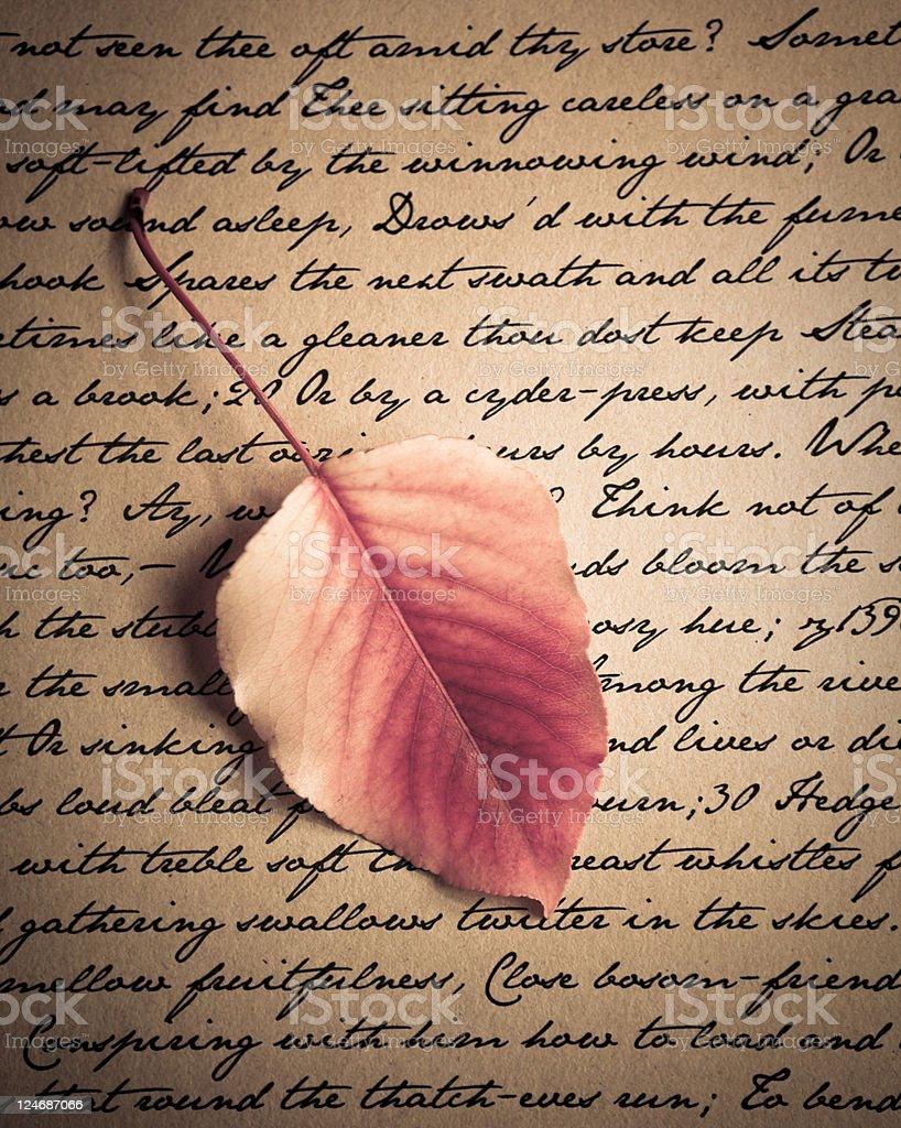 Autumn letter royalty-free stock photo