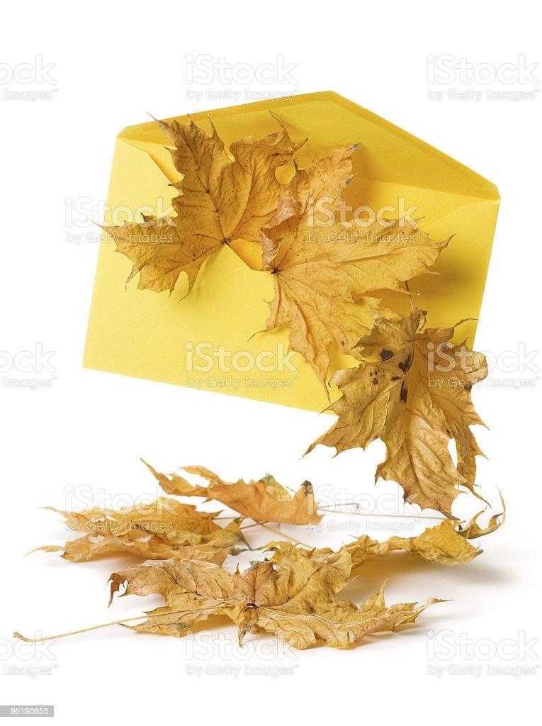 Autumn Mail royalty-free stock photo