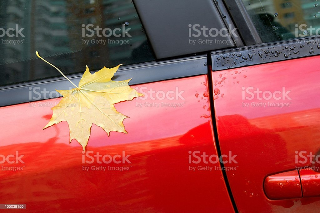 Autumn maple leaf on the car stock photo