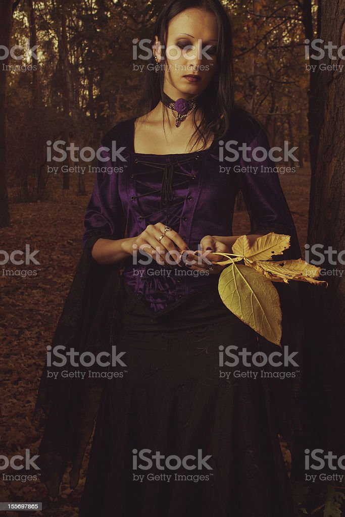 Autumn melancholy royalty-free stock photo