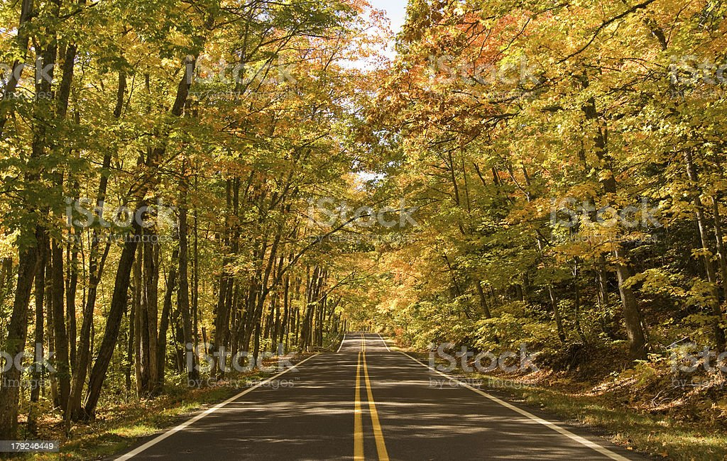 Autumn Michigan Drive Through Colorful Leaves stock photo