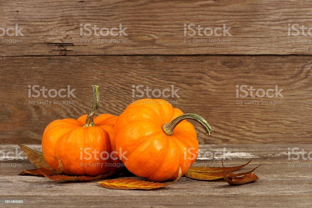 Autumn mini pumpkins with leaves on rustic wood stock photo