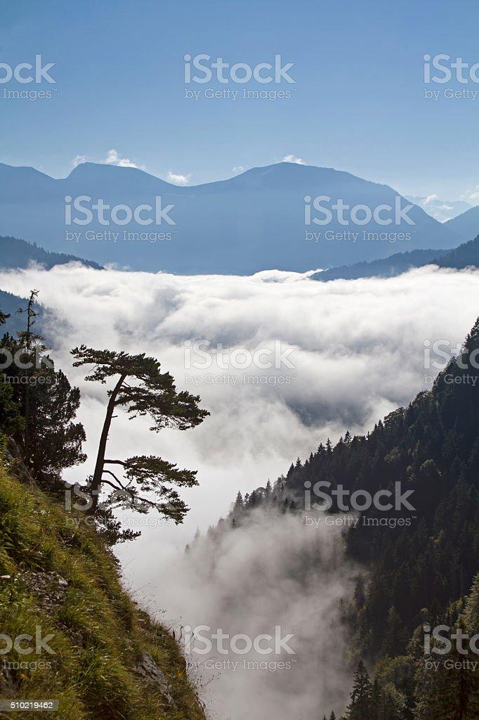 Autumn mist in Loisach Valley stock photo