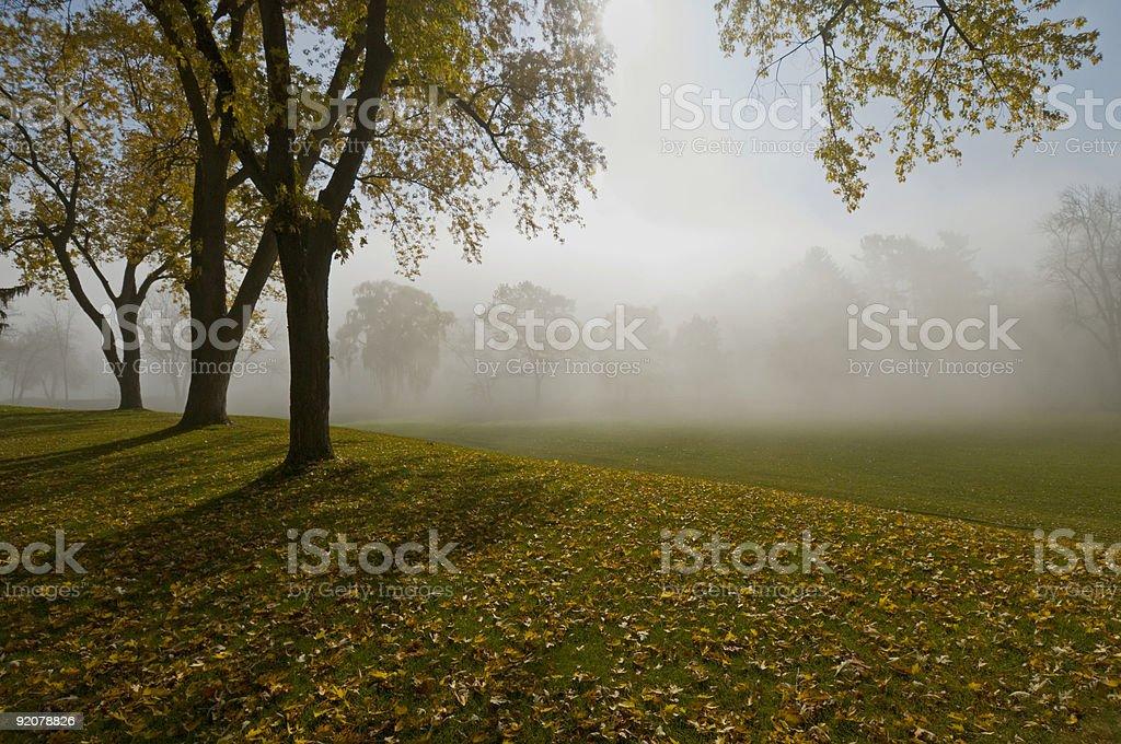 Autumn Mist royalty-free stock photo
