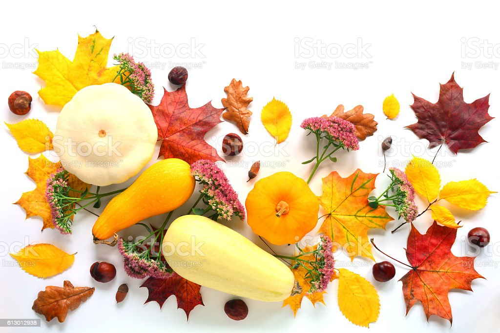 Autumn Mock Up stock photo